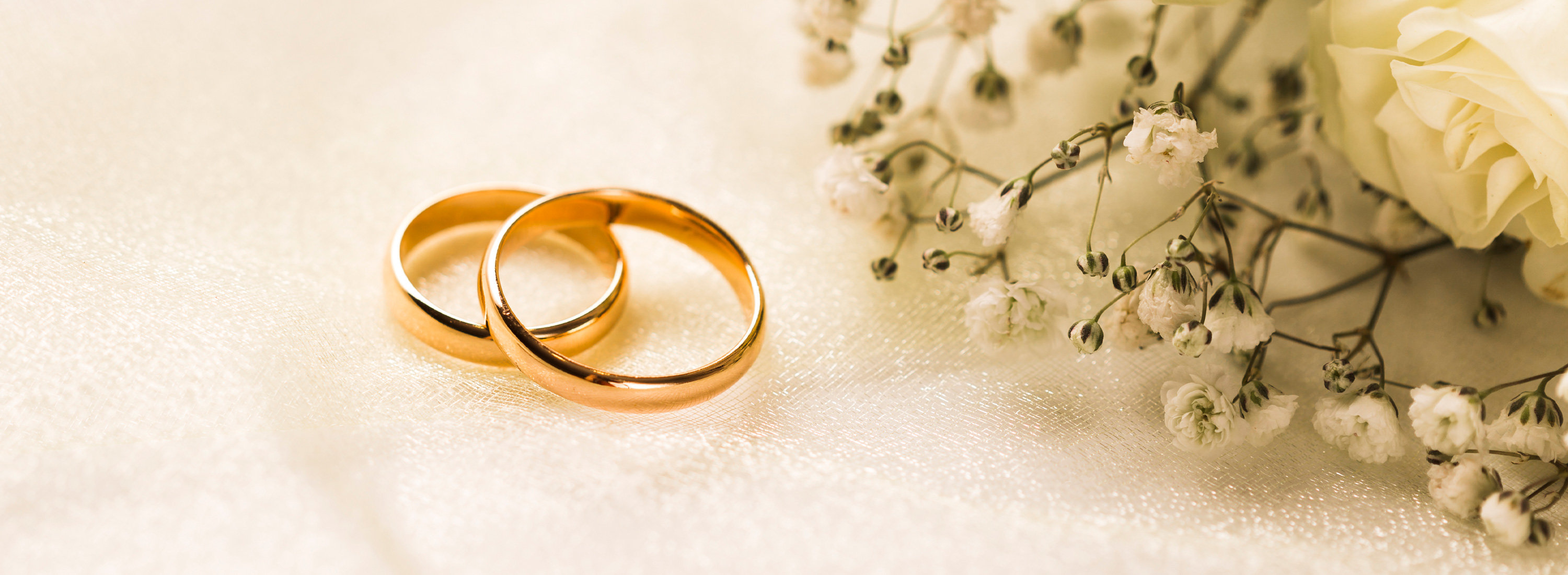 Banner image featuring two simple gold rings with a sprig of flowers against white, via Freepik Account through Student Affairs license.